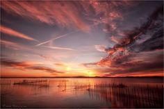 Buenos días viajeros. Amanecemos con esta bonita imagen del Parque Natural de la Albufera para empezar este Martes como se merece. Nos encanta sus colores y la paz que transmite.  Imagen de Toni Rovira   #vacaciones
