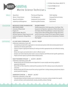 Modern Resume Sample For Program Evaluator  Graphic Design