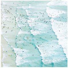 Pinterest - Grace Carroll
