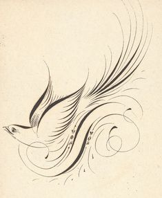Clinton Clark - A Master Penman - PDF of his scrapbook full of birds, flourishes and other amazing works. Flourish Calligraphy, Calligraphy Drawing, Copperplate Calligraphy, Calligraphy Letters, Penmanship, Modern Calligraphy, Fru Fru, Envelope Art, Tattoo Project