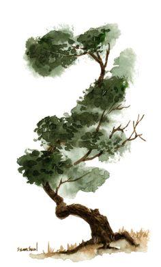 little-tree-120-sean-seal.jpg (544×900)