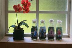 glass jar picture frames
