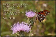 """God who created the world and gave life to all living beings does not live in man made temples. We cannot keep God in a cage or cave and pray. Now you know who is the true and living God.  Acts 17:24-25 - """"God, who made the world and everything in it, since He is Lord of heaven and earth, does not dwell in temples made with hands. Nor is He worshiped with men's hands, as though He needed anything, since He gives to all life, breath, and all things.  Justin Solomon SJ www.theophonyfm.com"""