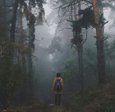 I love trees & the backs of people, tracks going away, I love the countryside, the tranquility, the beauty of nature, the green & the dank mist, this is perfect.