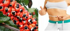 Health Benefits Of Guarana| Natural Home Remedies to #loseweight for Ginseng