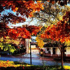 Auburn CA