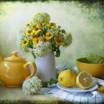 Love this still life!!!       Photo posted by Picture Girl.