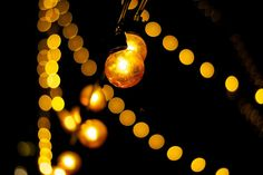 fairy lights (by clemsherpa)