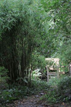 Bambu mot grannen