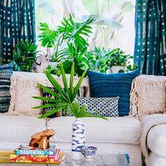 """Color + pattern + plants = #jungalowstyle"""