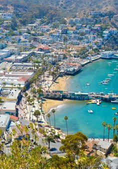 What to Do One Day Trip to Avalon + Catalina Island | What to do in LA | Luci's Morsels :: LA, California Travel + Lifestyle Blogger