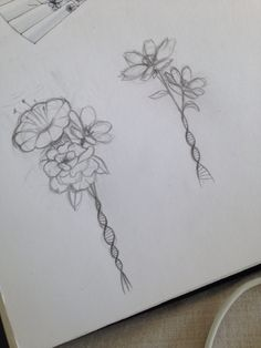 Potential designs for my first tattoo! DNA double helices which form flowers to symbolise my passion for Biochemistry. I'd love this on the top of my back