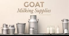 Goat Milking Supplies | Weed 'Em and Reap
