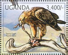 Tawny Eagle stamps - mainly images - gallery format