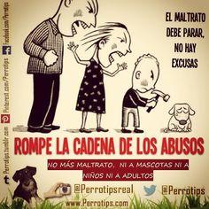 Los más débiles son los más maltratados  no permitas abusos en casa #perrotips