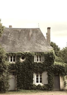 I love ivy growing up the walls of houses!