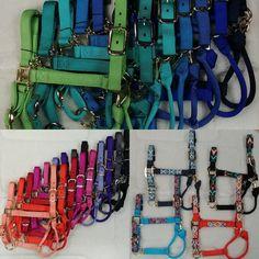 Horse Bridle, Horse Halters, Site Internet, Dressage, Tack, Html, Horses, Horse, Tips