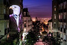 Águila | Galería de fotos 16 de 22 | AD MX