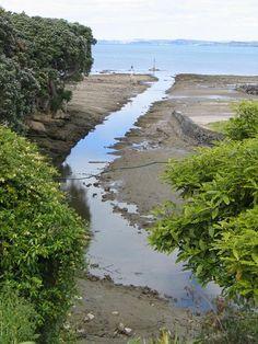 Wairau Creek, Milford Marina