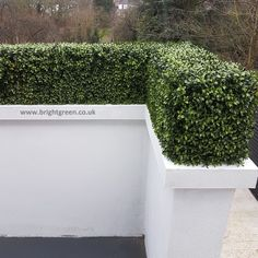 Artificial Hedge Custom Made for the location