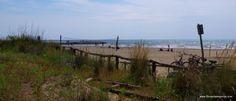 #spiaggia #cavallinotreporti