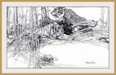1915 ca - Tigers, Illustration Pen and Ink drawing by Franklin Booth (carlylehold) by carlylehold (flickr) Tags: franklin booth pen ink drawing illustration picture haefner carlylehold 1915 robertchaefner robert c bo