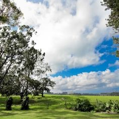Ka Hale Olinda - A beautiful upcountry wedding venue in Maui, Hawaii with sweeping costal views and an old camphor tree to marry under.