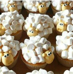 (make with chocolate cake mix instead – much … Sheep cupcakes- soooooooo cute! (make with chocolate cake mix instead – much cuter) Cupcake Recipes, Cupcake Cakes, Frosting Recipes, Kid Cakes, Baking Cupcakes, Sheep Cupcakes, Sheep Cake, Chocolate Cake Mixes, Chocolate Cupcakes