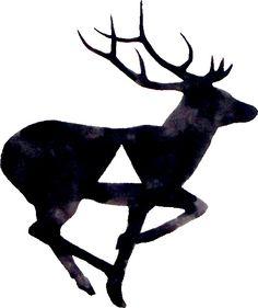 deer psychologie