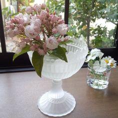 Maribowl iittala Vase, Kitchen, Home Decor, Cooking, Decoration Home, Room Decor, Kitchens, Vases, Cuisine