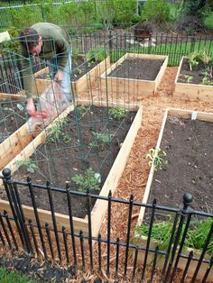 Vegetable Garden Box DIY | 2 Sisters Anytown USA- i like how they mulched between the boxes