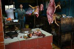 Macelleria di carne canina. Butcher of dog meat.