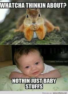 Cute baby and squirrel funny