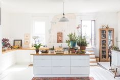 UT professor Margo Sawyer turns former grocery store into a light-filled studio and home, complete with a rooftop garden.