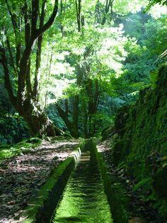 Passeio caminhada Pico Arieiro pico e Ruivo Curral das Freiras, Ilha da Madeira - Go Discover Portugal travel