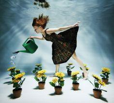 water the underwater garden Underwater Model, Underwater Photoshoot, Underwater Images, Underwater Art, Underwater Flowers, Sea Photography, Underwater Photography, Flying Photography, Pretty Pictures