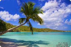 Beach+Bunnies+Panama+City | Beach Vacation: Beach Island 2
