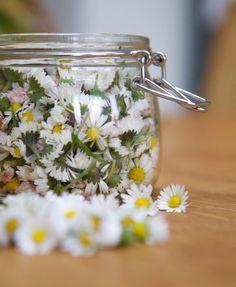 Le macérat huileux de Bellis pour raffermir la peau | Aroma'Tips Mason Jars, Sweet Home, Homemade, Health, Diy, Cosmetics, Natural Beauty, Natural Treatments, Natural Remedies