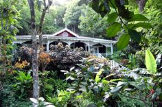 Fond Doux Holiday Plantation, Soufriere, St. Lucia