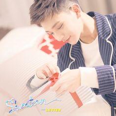 #seventeen #pledis17 #saythenameseventeen #kpop #carat #loveletter