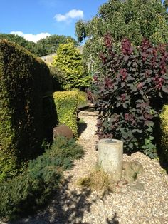 Pebbled pathways and sundials. NGS Gardens open for charity - Garden