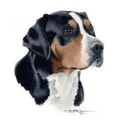 GREATER SWISS MOUNTAIN Dog Art Print Signed by by k9artgallery, $12.50