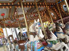 alameda county fair by Sherrie Thai Alameda County Fair, Ride Along, Carnival Rides, Merry Go Round, Carousels, Carousel Horses, Beautiful Horses, Creatures, Photo And Video