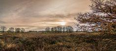 Photo Mechelse Heide by David Jonck on 500px