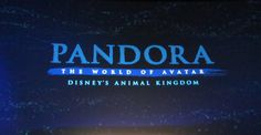 Na'vi audio-animatronic glimpse in Pandora: The World of Avatar preview presentation
