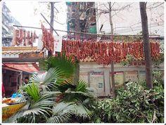 elämää ja elämyksiä:  Chengdu, China