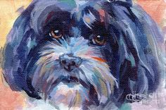 The traits we all enjoy about the Funny Havanese Pup Havanese Puppies, Dog Paintings, Dog Portraits, Art Pages, Dog Art, Mans Best Friend, Shih Tzu, I Love Dogs, Fine Art America