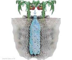 Vattningsystem