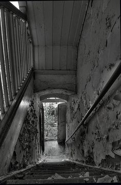 . Abandoned Mansions, Abandoned Buildings, Abandoned Places, As Time Passes, Growth And Decay, Dark Forest, Faded Glory, Stairways, Old Houses