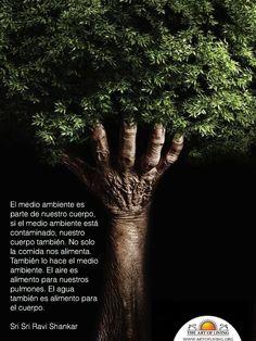 El medio ambiente y nosotros es lo mismo                                                                                                                                                                                 Más